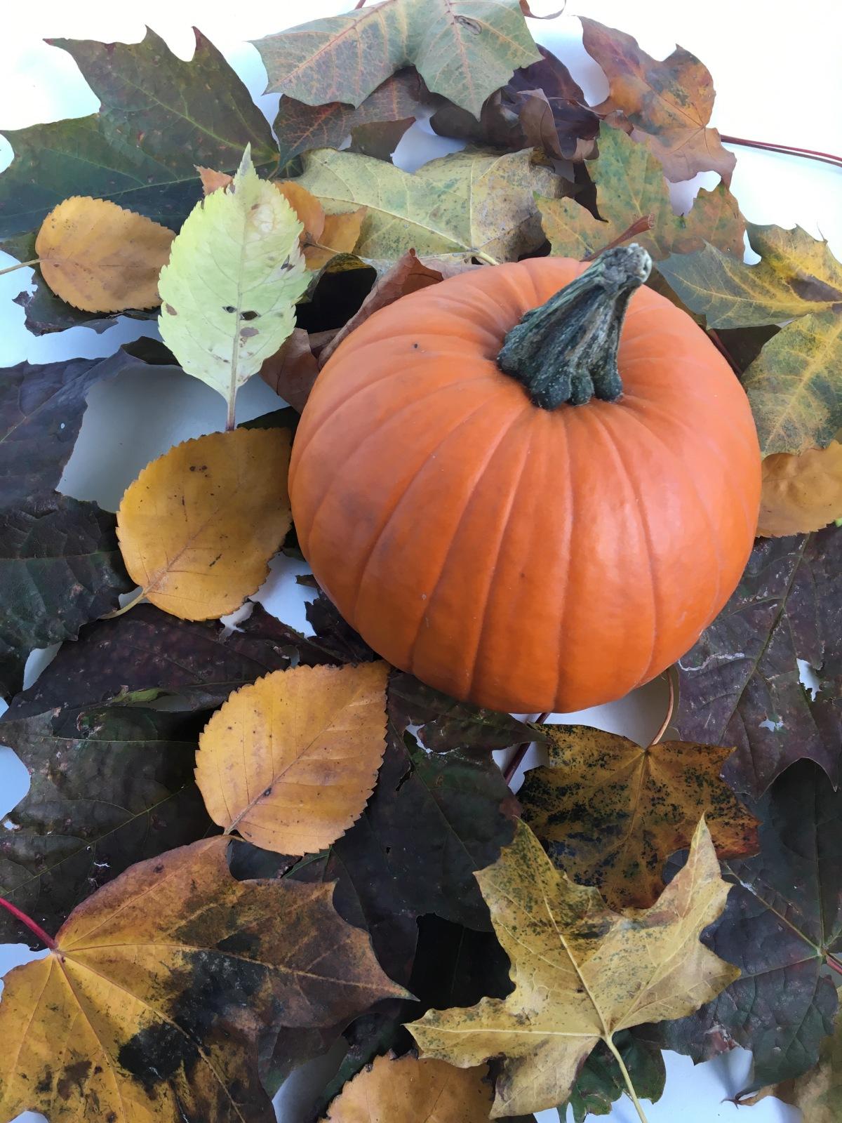 DIY-Pumpkin Face Mask for GlowingSkin!