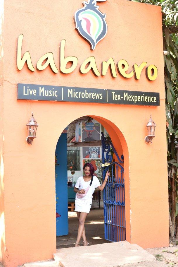 mexican restaraunt in Goa - Habanero