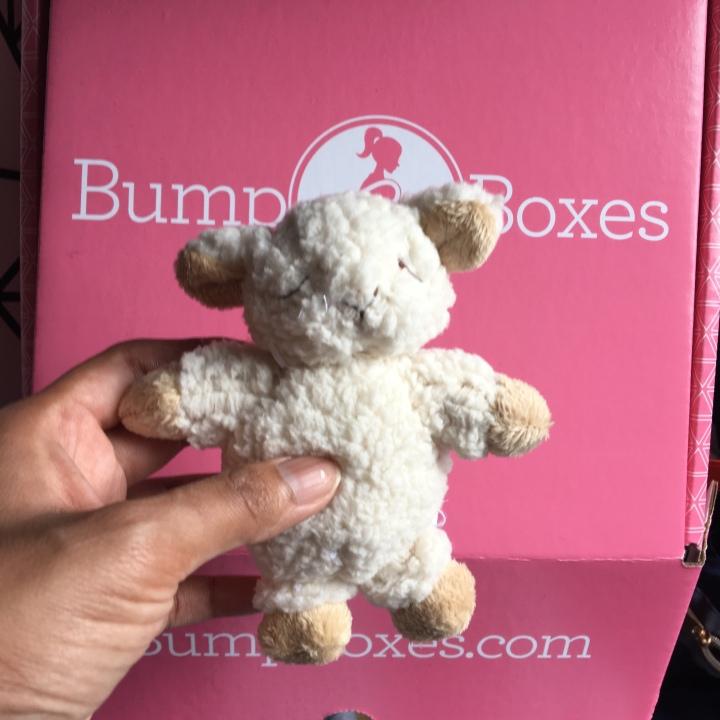 Bumpboxes review